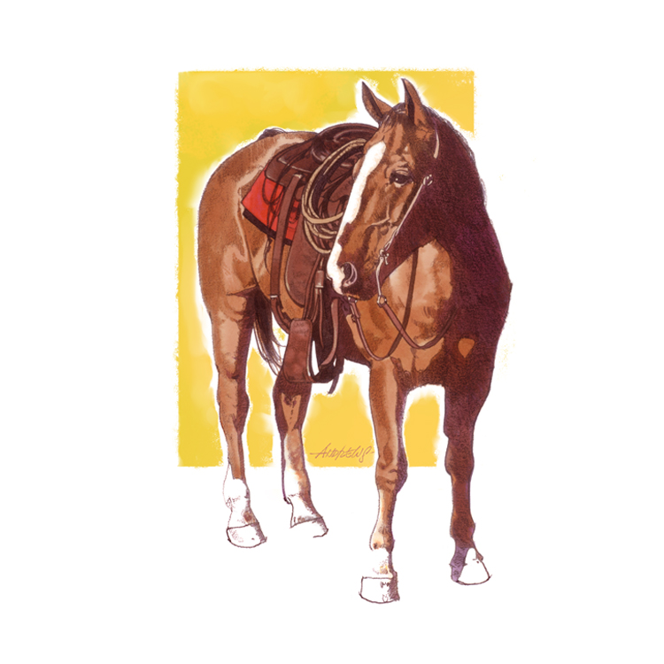 Roping_Horse