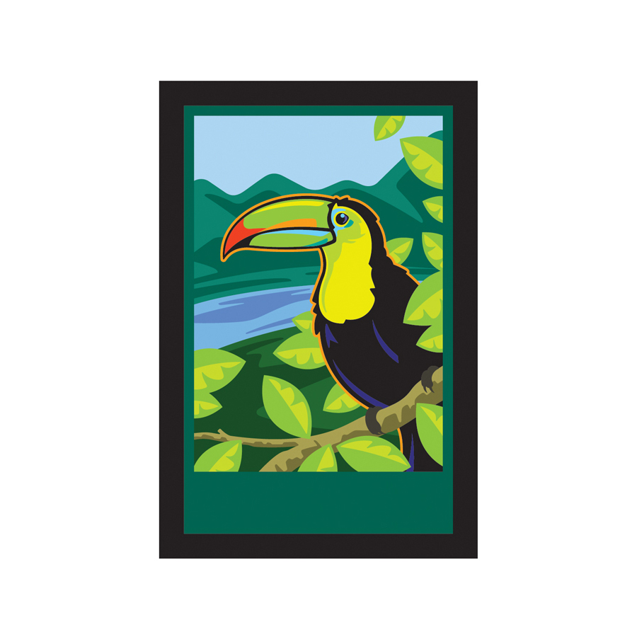 Rainforest_Toucan